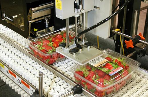 4300-strawberries-close.jpg