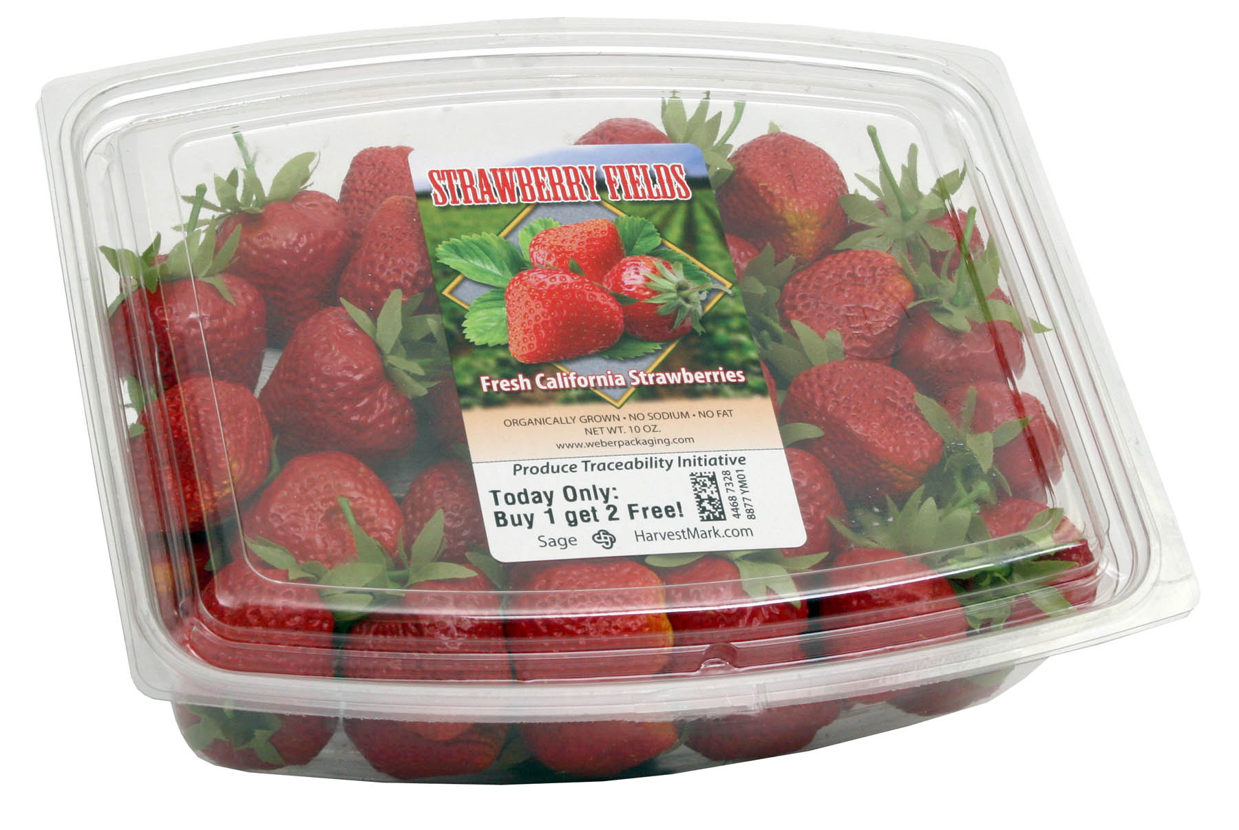 Strawberry_Fields_Labeled_Container